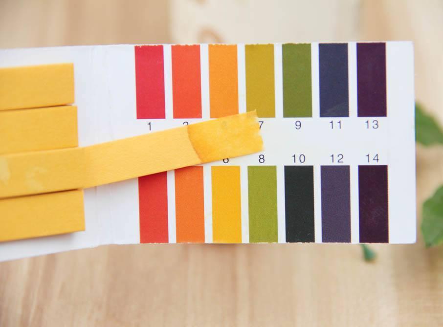 涂料底層酸堿度測定處理方案